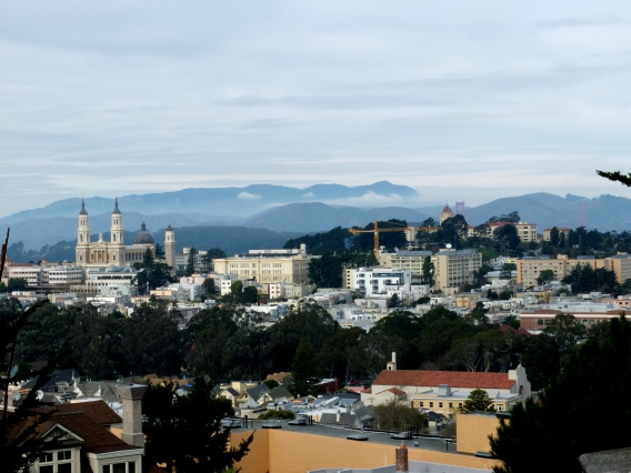 A random chunk of SF near Golden Gate Park (pic from last winter)